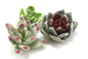 Wool Felted Succulents