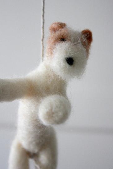 wire fox terrier 3
